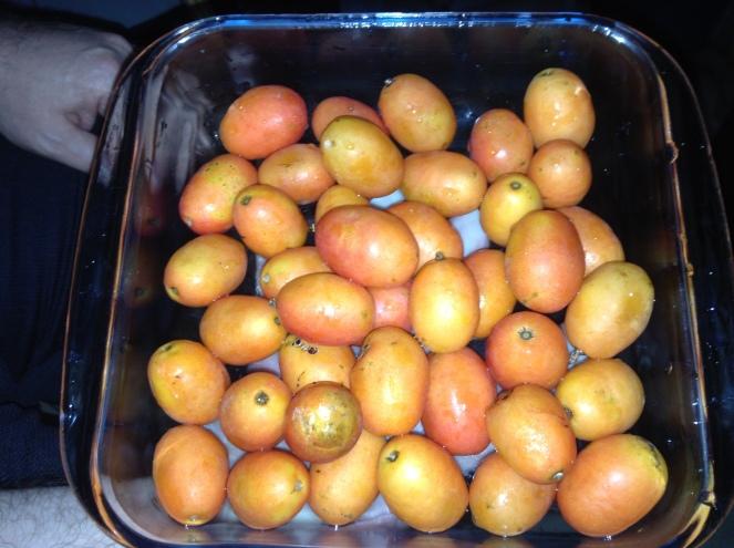 Seriguela, alguém lembra dessa fruta?